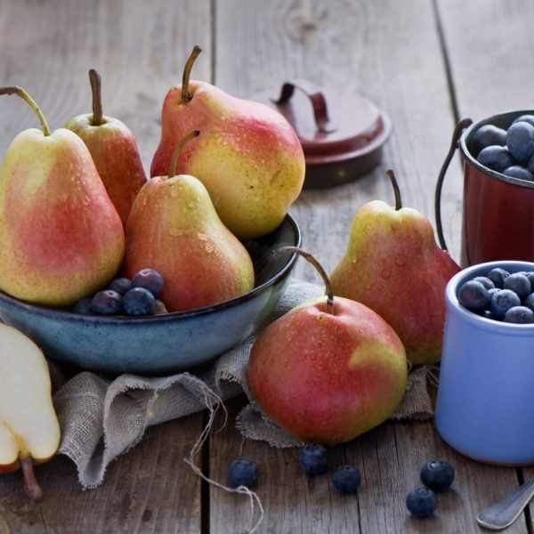 Pears_Fruit_Berry_464009